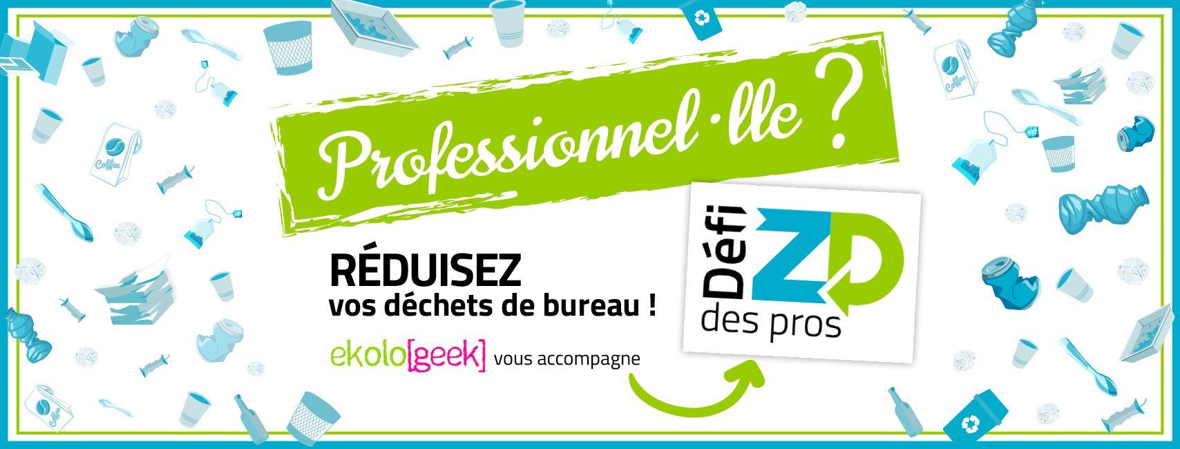 Gobi Bordeaux, en 4ème place du défi Ekolo[geek] !